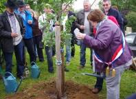 Véronique COLLET, maire de Bougy, apporte une touche finale à la plantation de l'arbre !